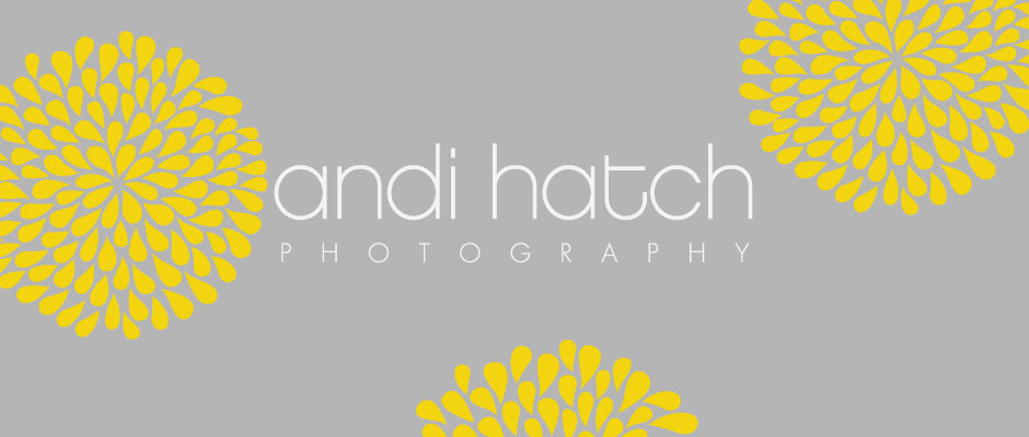 Andi Hatch Photography logo